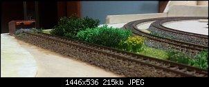 Нажмите на изображение для увеличения.  Название:кустарники.jpg Просмотров:44 Размер:214.8 Кб ID:32215